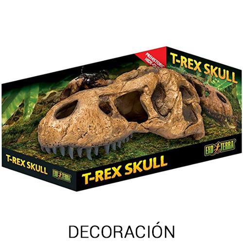 decoración para iguanas exóticas y bonitas