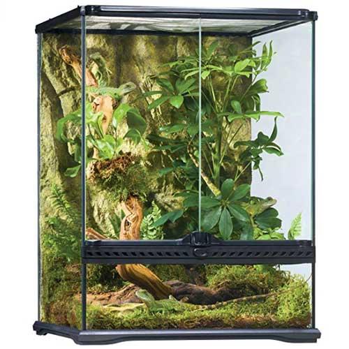 habitat kit exo terra para iguanas exóticas info tienda online paralasiguanas.top