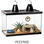 peceras para las iguanas casa ideal info tienda online paralasiguanas.top