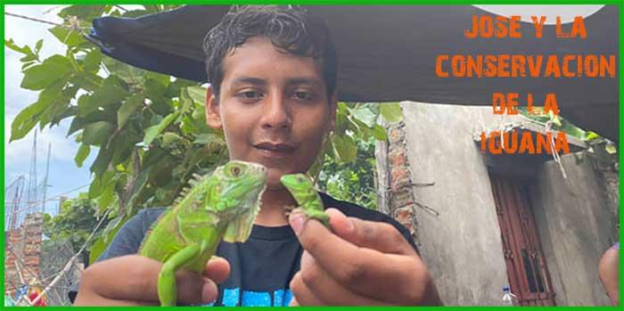 En Juchitán Oaxaca comen 200 iguanas al día, y el joven José planea la conservación de la iguana