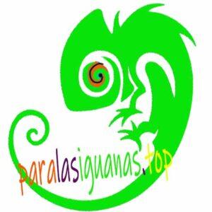 Paralasiguanas.top - logo