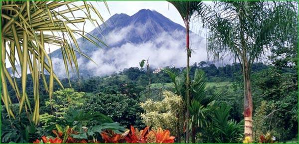 ¿Cuál es el hábitat de las iguanas?