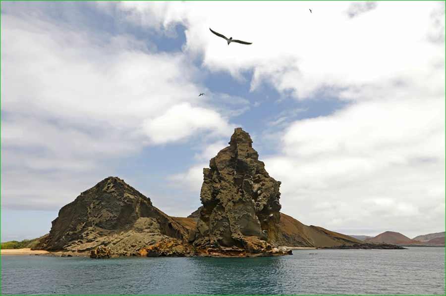 La iguana y otras especies de animales de Islas Galápagos se sienten libres de nuevo - Aves rondan esta pequeña isla
