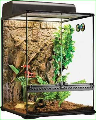 Terrario para iguana - mediano - Exo Terra Glass Terrarium Mayan, Small/Tall